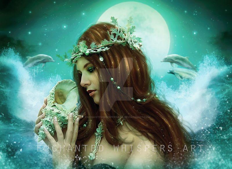 Seashell by EnchantedWhispersArt