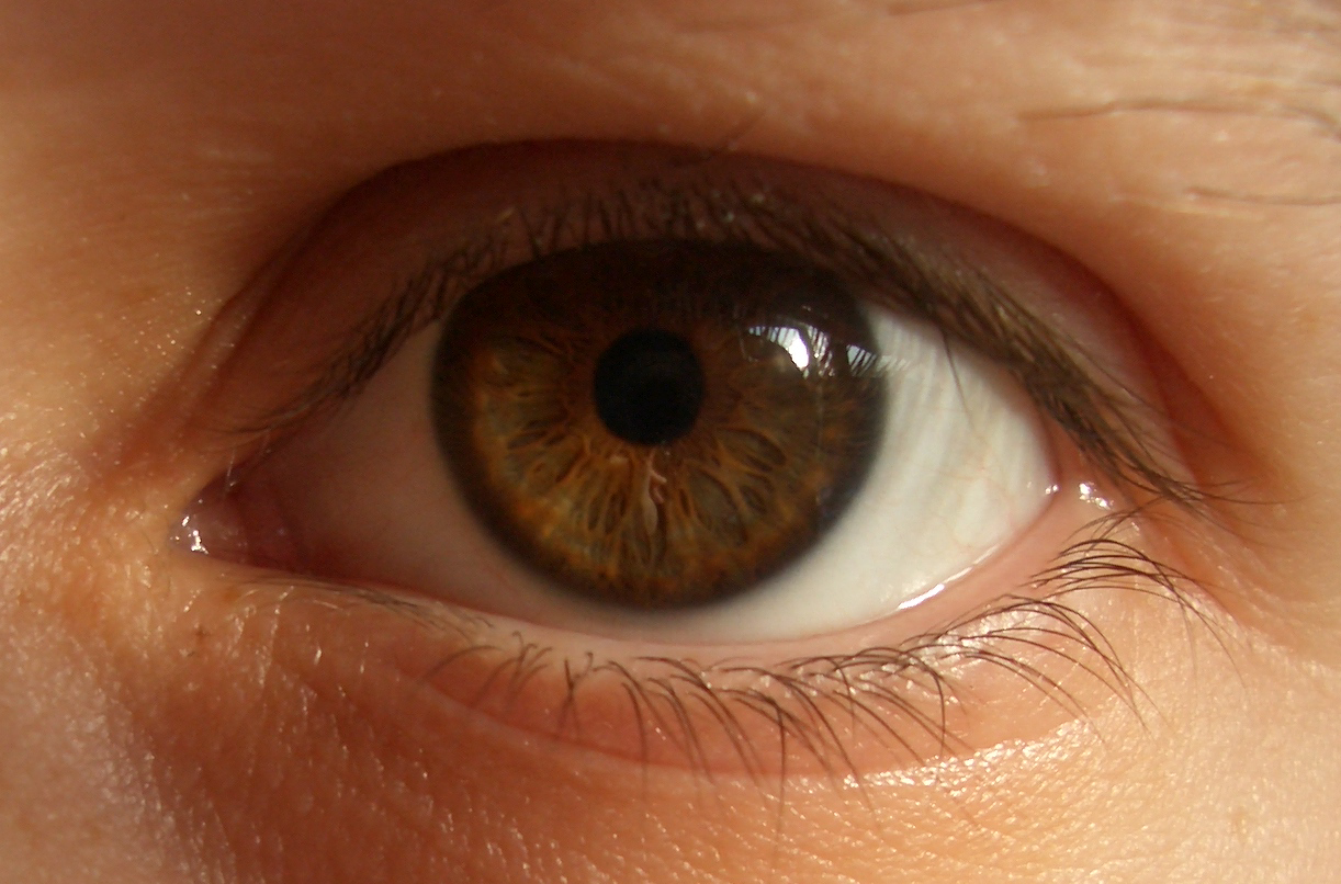Closeup Of Eye 85