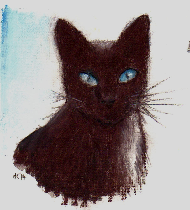Blue Eyed Havana by Carol-Kay