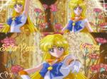 Sailor Venus Crystal Wallpaper
