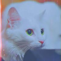 Asuna by Nikulina-Helena