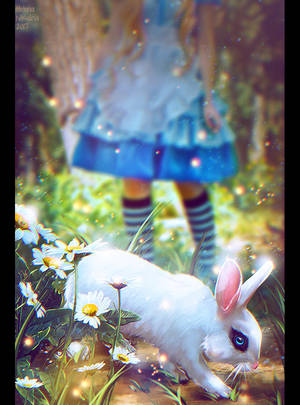 The White Rabbit (Commission) + Video by Nikulina-Helena
