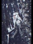 November 23, 2941, Third Age (Commission) + Video by Nikulina-Helena
