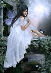 fairies' stream