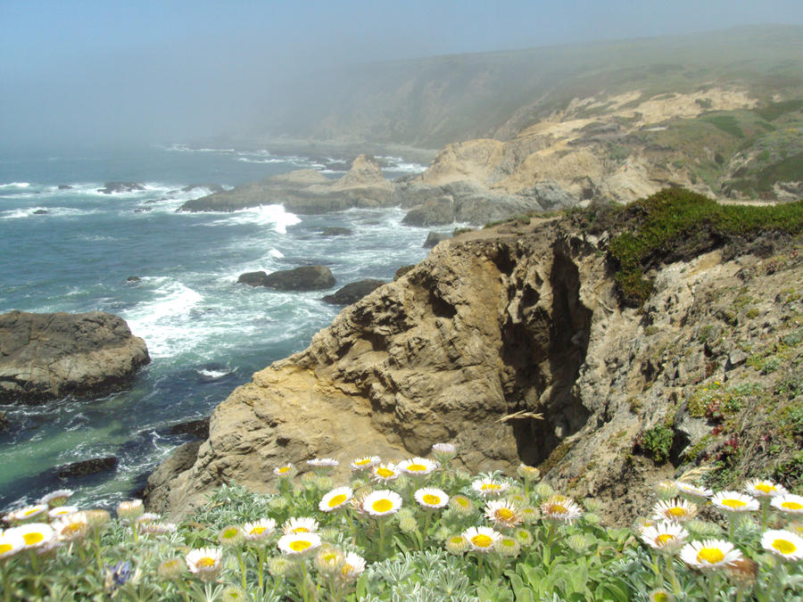 Flowers n Cliffs by Bleachfangirl