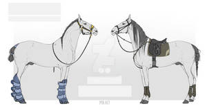 HORSE LINE \ HORSE BAZE FOR SALE #2