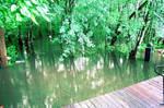 Flooded!!
