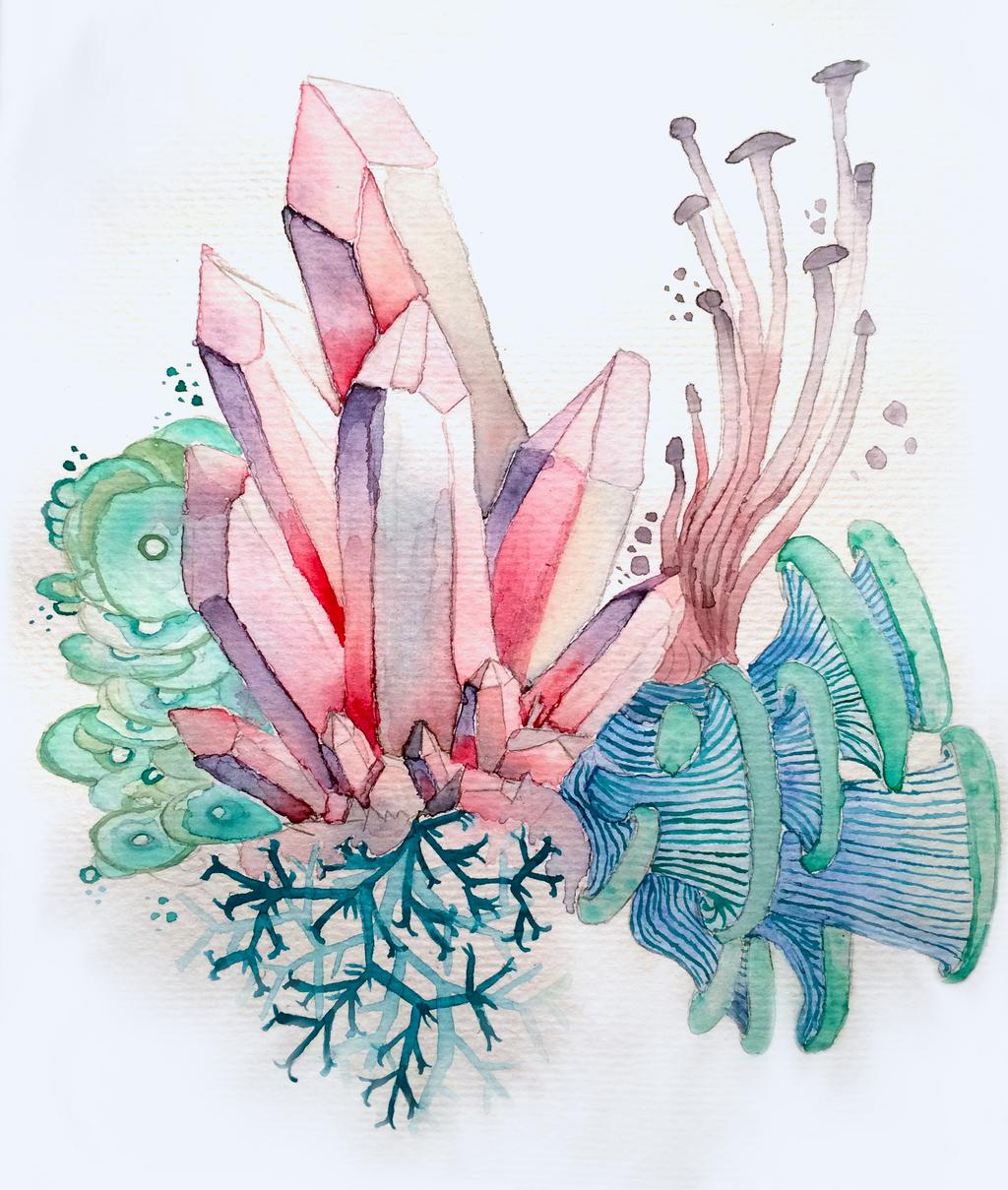Crystal Study // Cave Treasures by shooshu