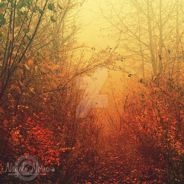 The Gate To Wonderland by NayeliNeria