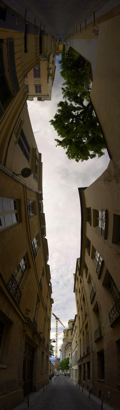Upside down by cjvernet