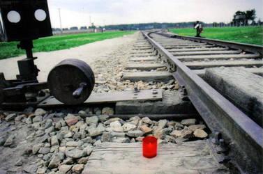 rail at Auschwitz