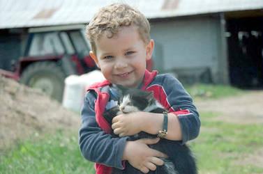 a little boy and his kitten