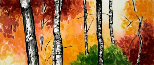 Fall Colors by PabloRuiz