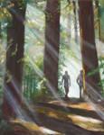 Foggy Morning, Redwood Reg Pk