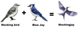 The Bird: Mockingjay making by CeeCeeXD