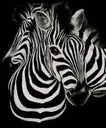 zebra stripes by Momof4boyoboys