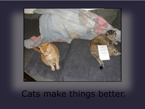 Cats Make Things Better