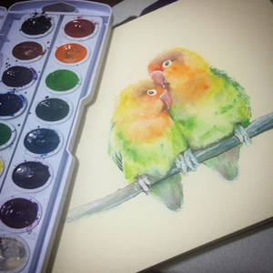 Watercolor study of birds