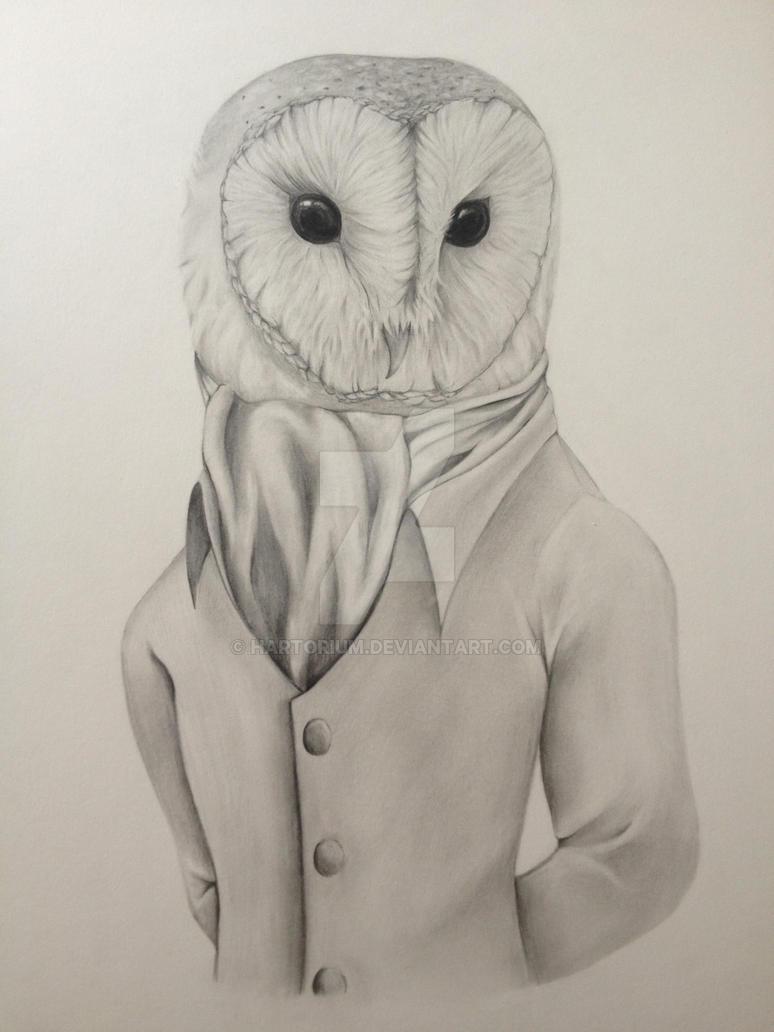 Anthropomorphic Barn Owl By Hartorium On Deviantart