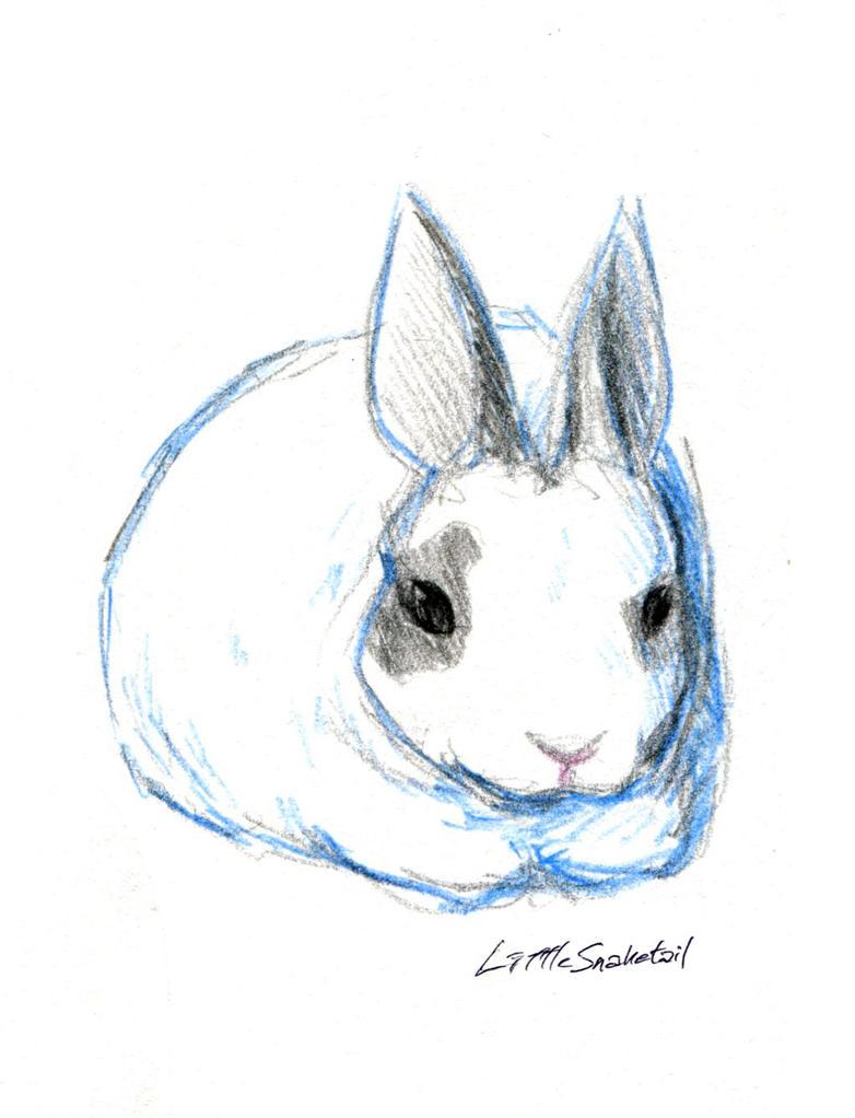 Rabbit by LittleSnaketail