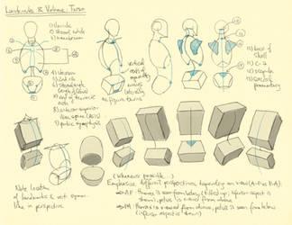 Hampton p.30-36: Torso Landmarks + Volume by theThirdCartel