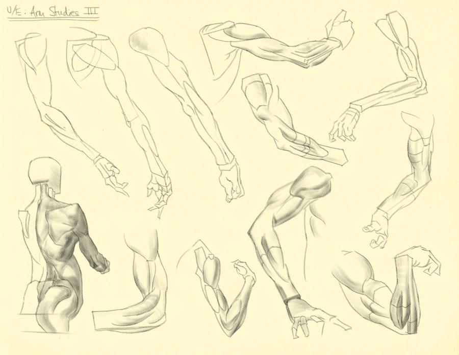 Hamptons p.149-153: U/E - Arm Studies III by theThirdCartel