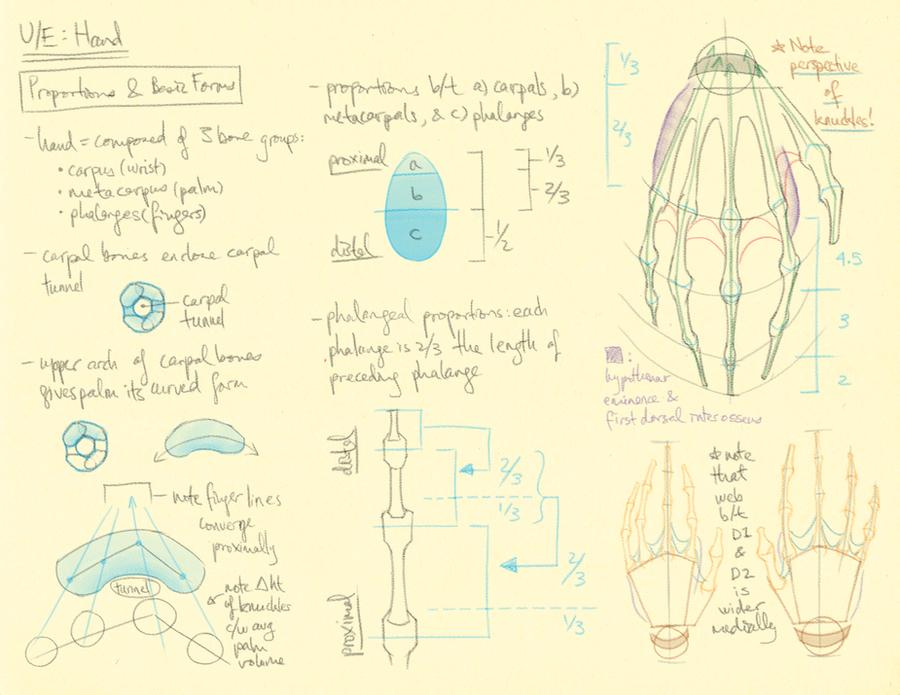 Hampton p.161, 163: U/E - Hand Basics by theThirdCartel