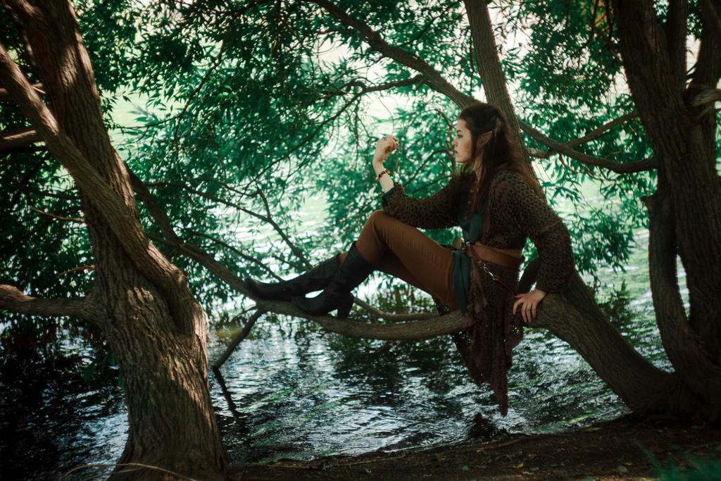forest elf and the - photo #28