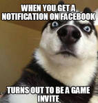 Game Invite Meme by SkekMara