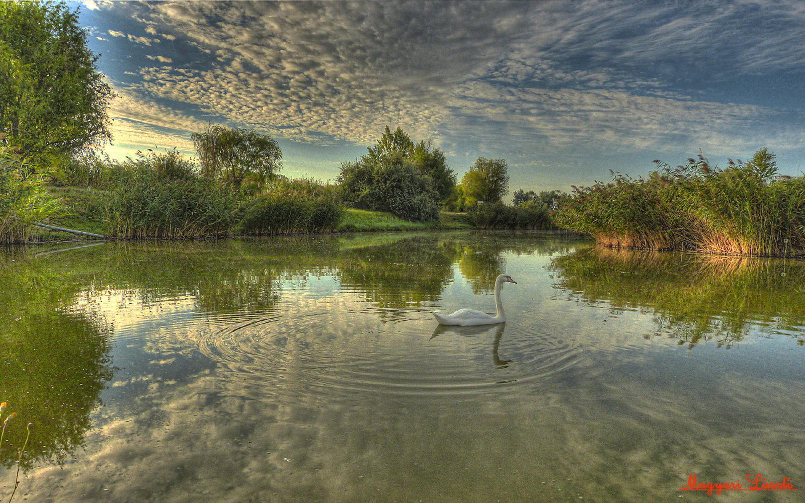 HDR-picture. (Hungarian landscapes) by magyarilaszlo
