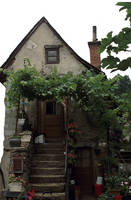 LS witch house by lounalovegood-stock