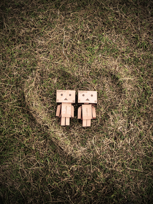 Danbo in Love by Musashigyo