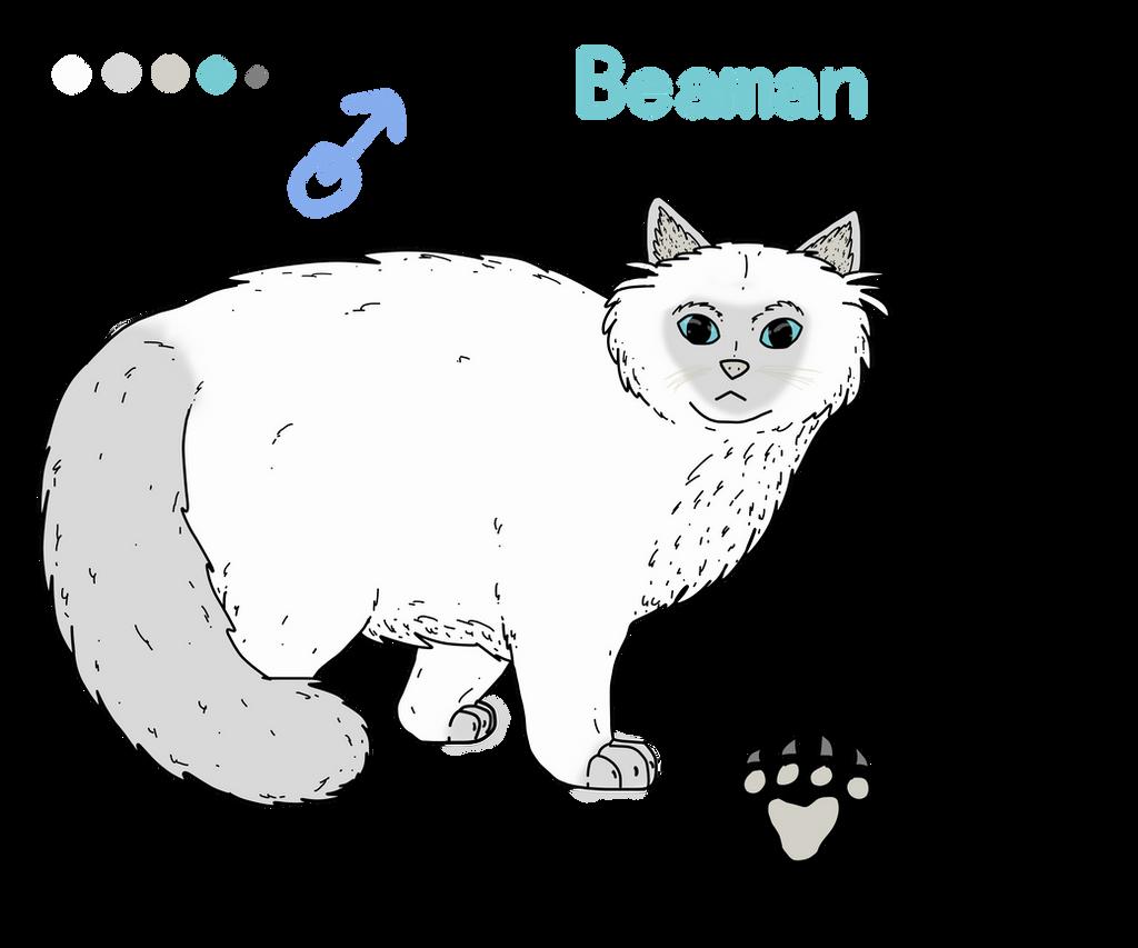 Beaman chat