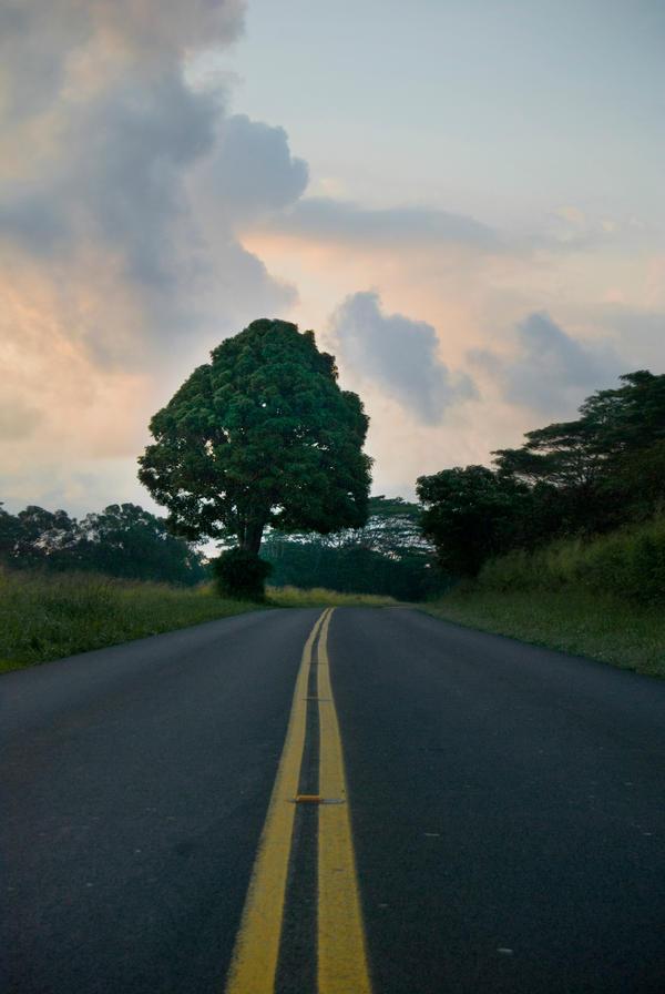 Sunrise over the Road by d-elner