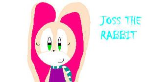 Joss The Rabbit