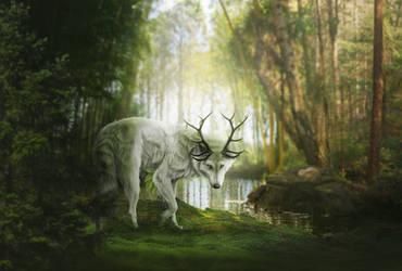 [request] depth of life by Fiirewolf