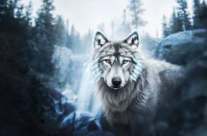 ice queen by Fiirewolf