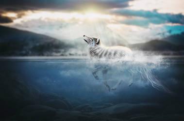 rays of sunshine by Fiirewolf