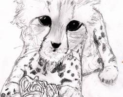 Kitten Yarn by mysticmadman