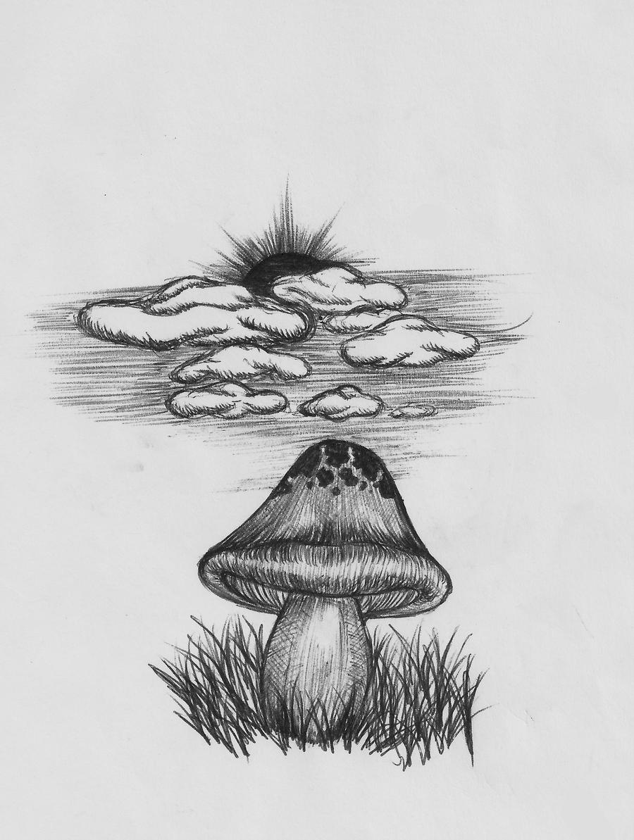a mushroom on biro by greempo on deviantart