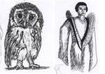 [Inktober] 01 - Owlet and a fail