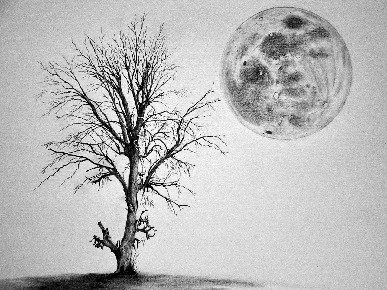 the tree and the moon wip 3 by simonvelazquezart on deviantart