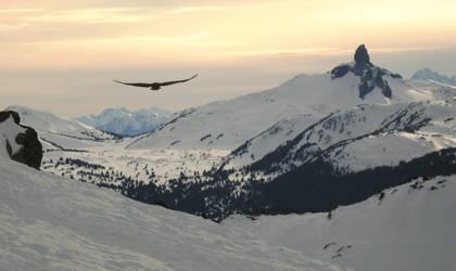 Sunset in Whistler by editordistriktmag
