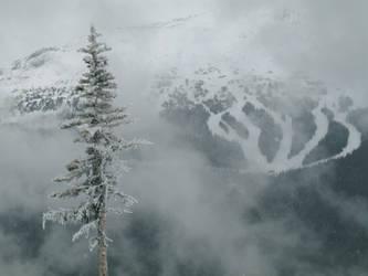 Mountain Loneliness by editordistriktmag