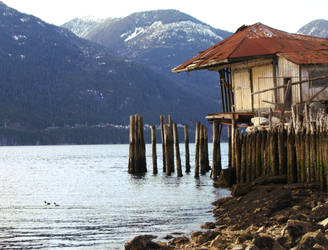 Lake Shack by editordistriktmag