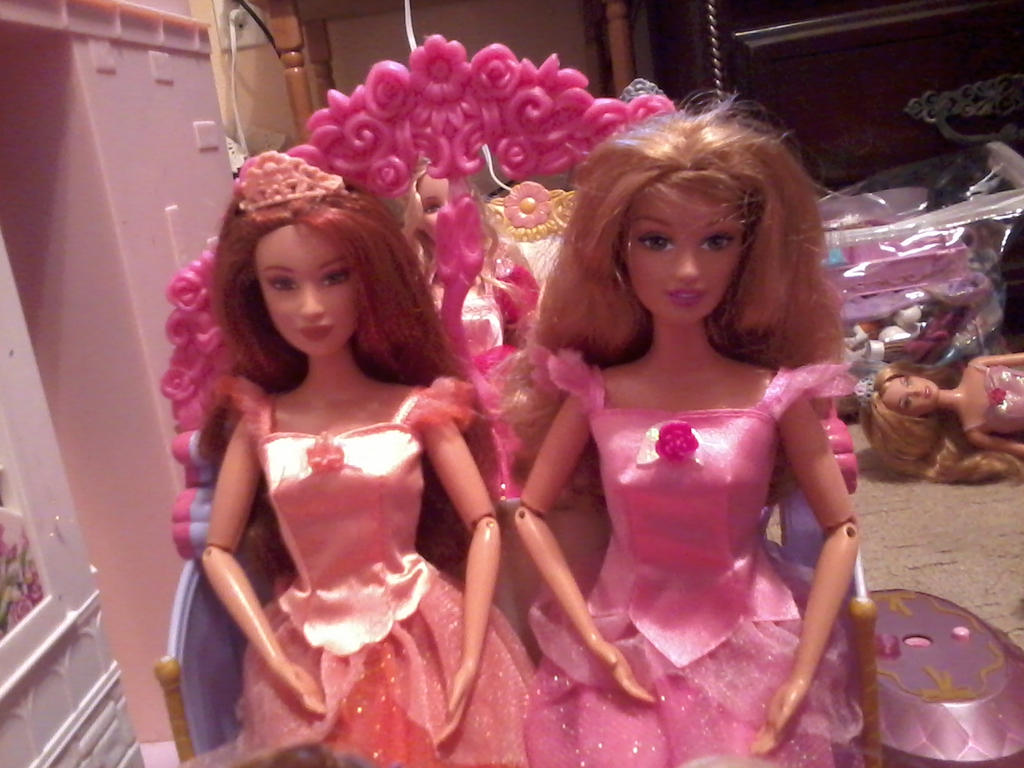 Barbie 12 dancing princesses fallon and edeline by - Barbie 12 princesse ...