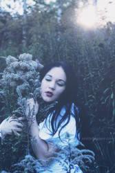 :::Lucid Dreams V::: by SATYRJA
