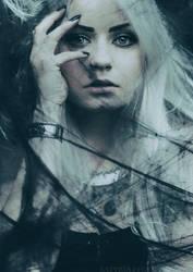 :::Silverrr::: by SATYRJA