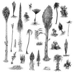 A Bounty Black Plants
