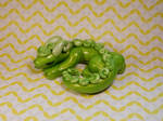 Green Swirly Dragon